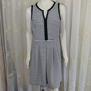 Perfect Summer Work Dress by Shelby & Palmer